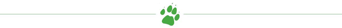 VetCall paw logo