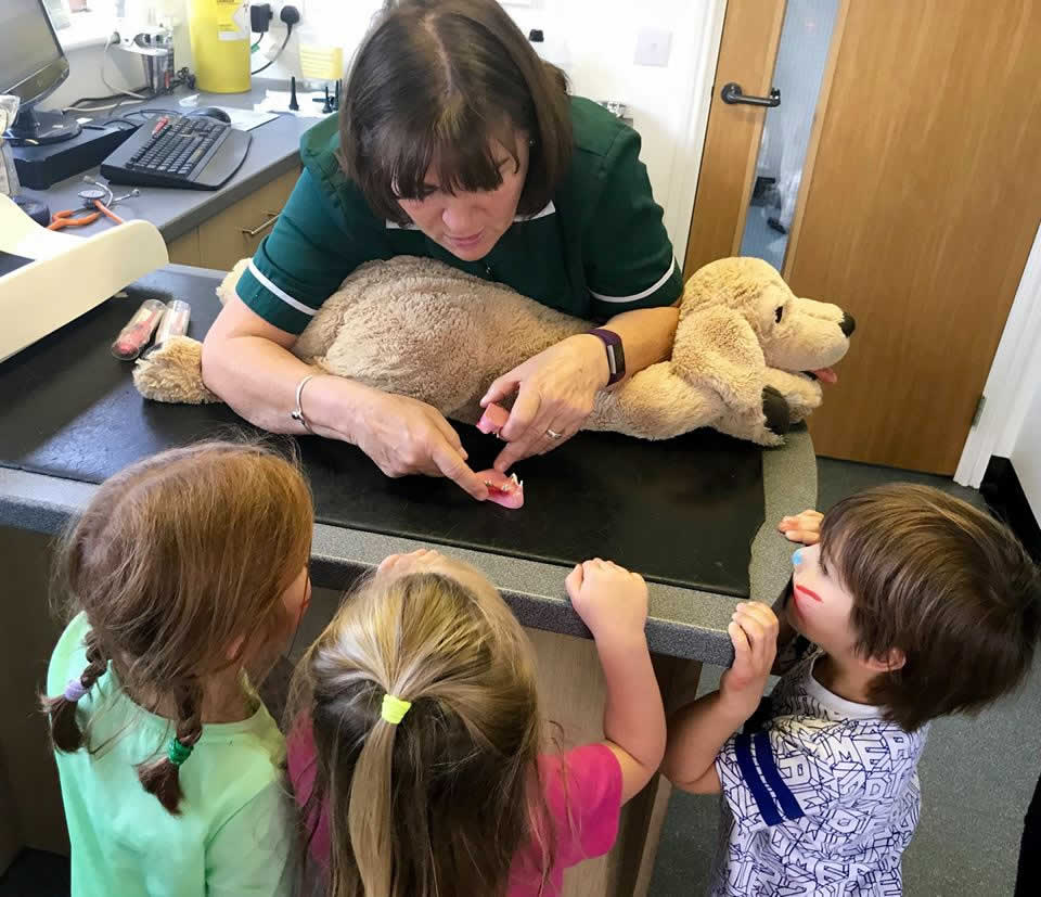Future little vets visit Manor Farm!